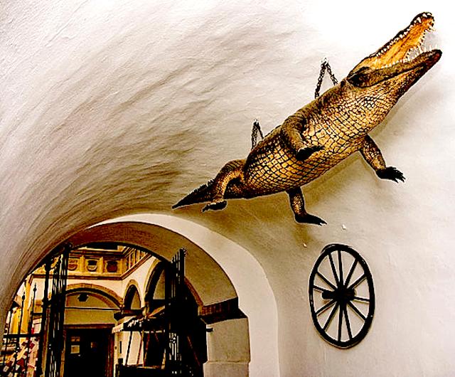 Brněnské drak (The Brno Dragon)