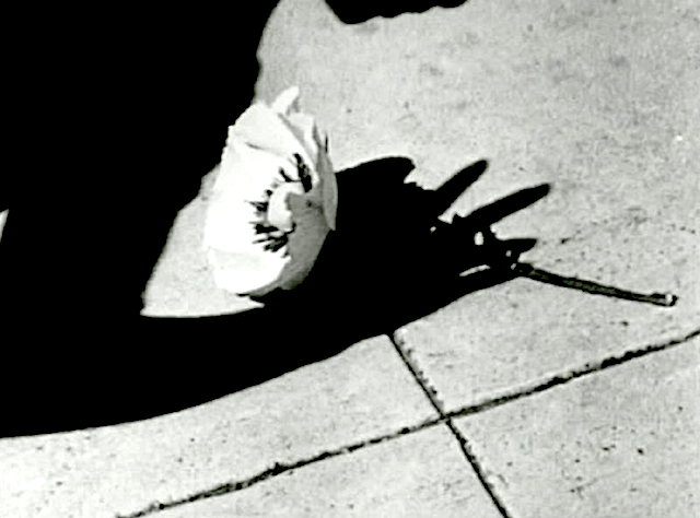 Frame from Maya Deren's Meshes Of The Afternoon
